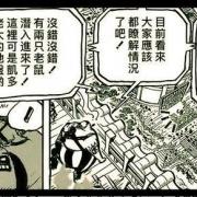 海賊王:自信的三災次席奎因,奎因將成為路飛等人擊敗凱多的功臣