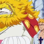 海賊王981話:king被馬爾科預定,索隆的對手只剩下凌空六子之首