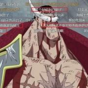 海賊王:白鬍子死後,凱多為什麼不去霸佔他的地盤?