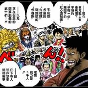 海賊王988話情報:漫畫合刊延遲推出,貓蝮蛇和犬嵐月光獅子形態曝光?